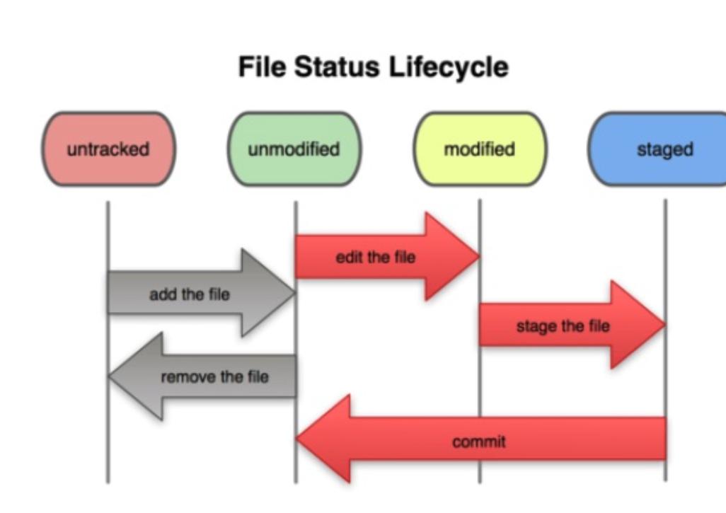 Git Diagram | Github