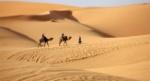 Deserto-Sahara-Marocco-650x352