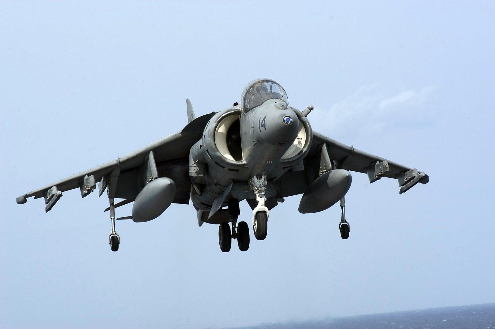 Harrier-710485
