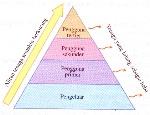 aliran tenaga dalam piramid nombor