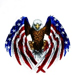 Car-Decal-Flying-Hawk-Auto-Truck-Hood-Side-Eagle-USA-Flag-Sticker.jpg_640x640