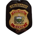 DELEGADO P.CIVIL