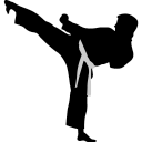 karate-highkick-icon