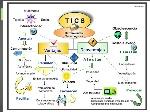 uso-de-la-tics-en-la-educacion-3-638