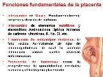 desarrollo-de-la-placenta-16-728