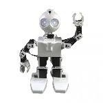 ez-robot-jd-humanoid-robot
