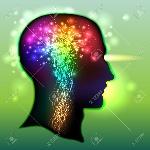 Sytem neurologique