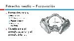 Estrecho+medio+–+Excavación