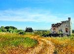 Paesaggio-rurale