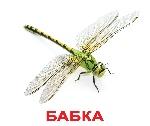 bab_u_02_new