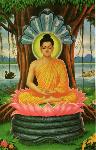 Buddha_meditating