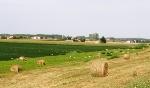 paesaggio_rurale_comp