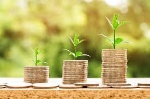 dinero sostenible