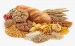 que-son-los-glucidos-FILEminimizer-e1444645350808