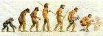 evolucion003