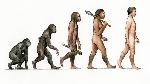 GTY_evolution_of_man_jtm_141115_16x9_992