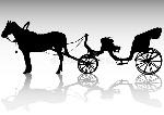 animal-powered-transport-13988771