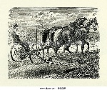 two-horse-mower-used-on-the-farm-in-victorian-times-b9252r