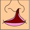 Uni lip com