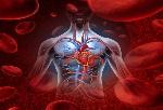 Stok-darah