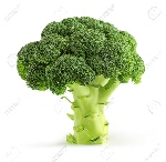 25034796-fresche-broccoli-verdi-isolati-su-bianco