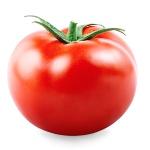 immagine-pomodori-1