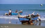 imagen-turismo-pesca