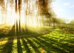 Sunrise-Trail