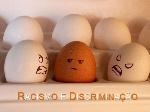 Diferença-entre-Discriminação-e-Racismo