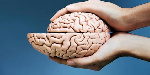 420-exercise-not-puzzles-protect-aging-shrinking-brain-esp_imgcache_rev1359491807598