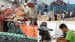 actividades-economicas-secundarias-tile