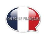 lart-et-la-maniere-de-parler-francais