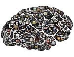 brain-954822_960_720