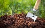 organic-soil-for-growing-cannabis