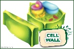 1200-cell-wall