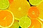 citrus_by_stuartreading