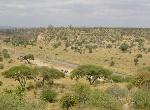 tarangire-national-park-tanzania