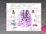 dificultades-especficas-de-aprendizaje-3-728