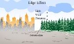 500-79336264-edge-effect-illustration