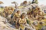 gruppi di scimmie