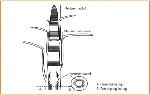Pengertian Jaringan Meristem, Fungsi, dan Ciri-Cirinya