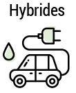 hybrides2