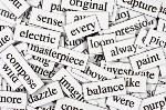 vocabulary (1)
