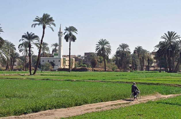 Egyptian_Countryside_-629x414