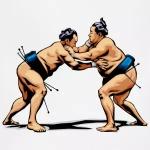 sumo-adjustable-apron