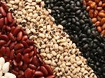 AN574-Beans-732x549-thumb