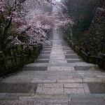 aesthetic-asia-asian-beautiful-Favim.com-3228169