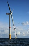 220px-Windmills_D1-D4_(Thornton_Bank)