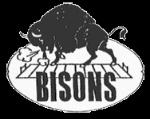 Buffalo Bisons