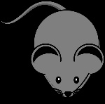 mouse310756_960_720